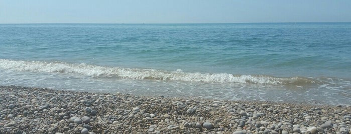 platja cap de grills is one of karu's Liked Places.