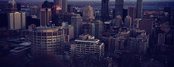 Parc du Mont-Royal is one of Great City Parks in the United States and Canada.