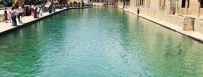 Şanlıurfa Balıklı Göl is one of c. 님이 좋아한 장소.