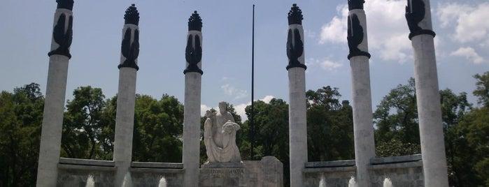 Bosque de Chapultepec is one of DF General.