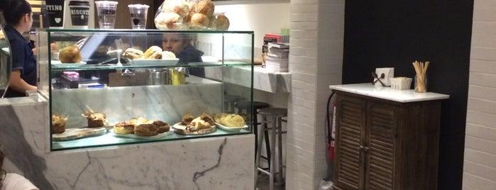 Los Mejores Cafés de Especialidad del DF