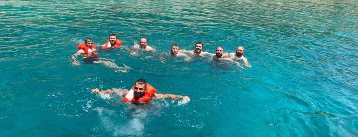 Güvercin Ada Dive Spot is one of Kaş & Kalkan.