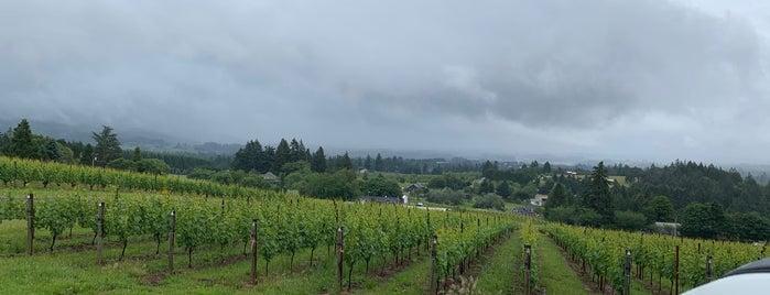 Portland wine country