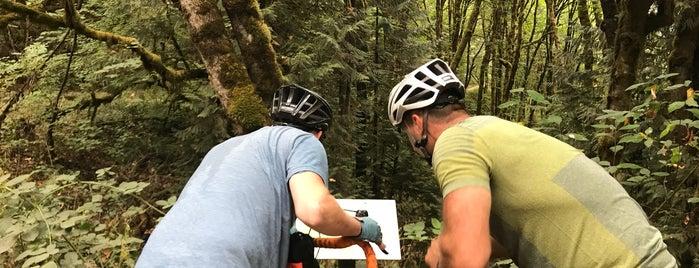Saltzman Trail is one of Portland.