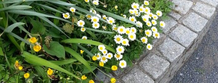 志茂五丁目南児童遊園 is one of Lieux qui ont plu à Masahiro.