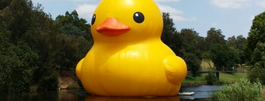 Rubber Duck, Sydney Festival is one of jaddanさんのお気に入りスポット.