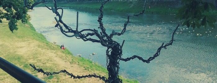 Дерево ФРІдей is one of Міні-скульптури. УЖГОРОД!.