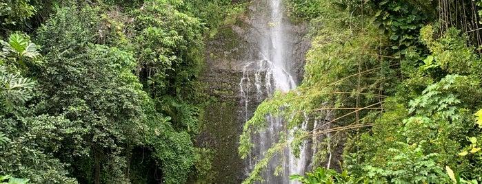 Wailua falls is one of Amandaさんのお気に入りスポット.