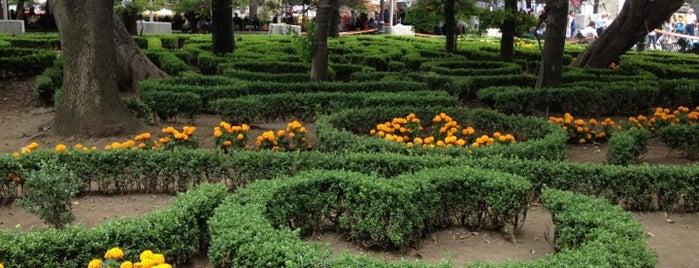 Jardín Hidalgo is one of Ciudad de México.