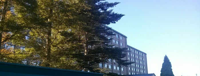 International Garden Hotel Narita is one of My Hotels.