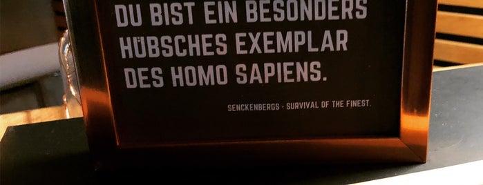 Senckenbergs is one of #myhints4frankfurt.
