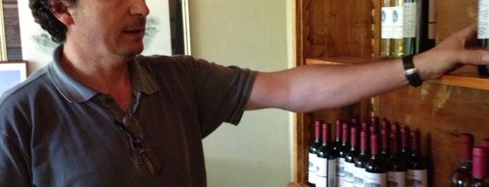 Frascole is one of Chianti Rufina tastings.