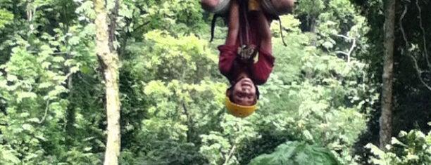 Vista Los Sueños Rainforest Tours is one of Posti che sono piaciuti a Angie.