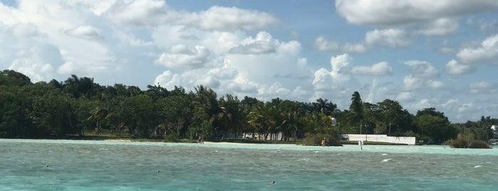 Cenote Cocalitos is one of Orte, die Googliana gefallen.