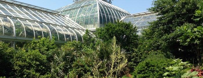United States Botanic Garden is one of DC.