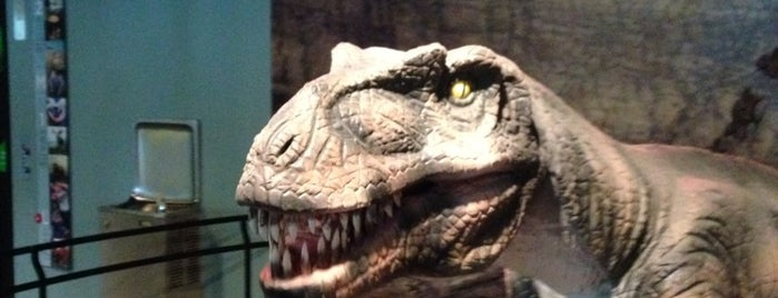 The Academy of Natural Sciences of Drexel University is one of Best places to see dinosaurs.