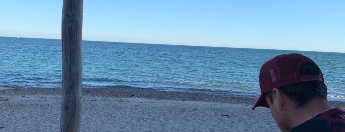 Coralito Beach Club is one of Orte, die Fernanda gefallen.