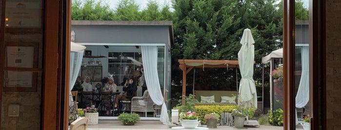 Begonia Garden is one of Kahve & Çay.
