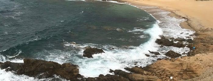 Ftelia Beach is one of Valeria'nın Beğendiği Mekanlar.