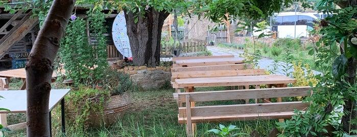 Adabahçe Kır Sofrası is one of Gökçeada.
