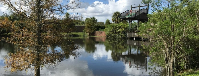 Screamin' Gator Zipline is one of Orlando.