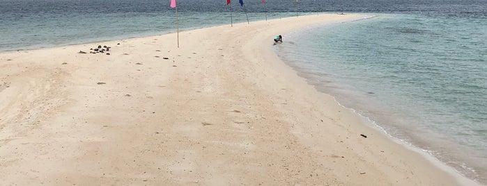 Buntod Reef Marine Sanctuary and Sandbar is one of Philippines.