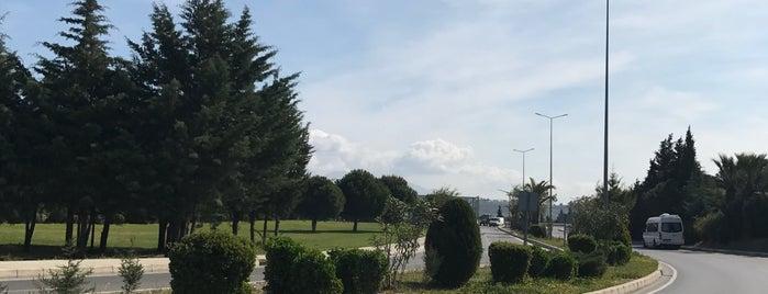 Protokol yolu simpark is one of Locais curtidos por Umut.