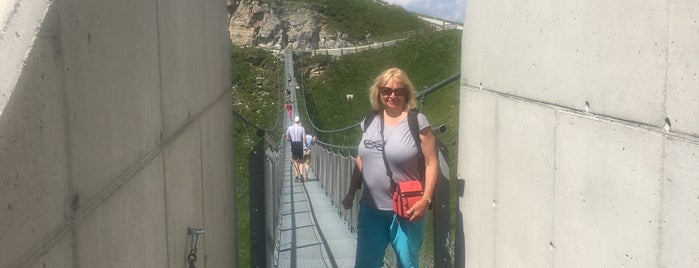 Suspension Bridge is one of Salzburg.