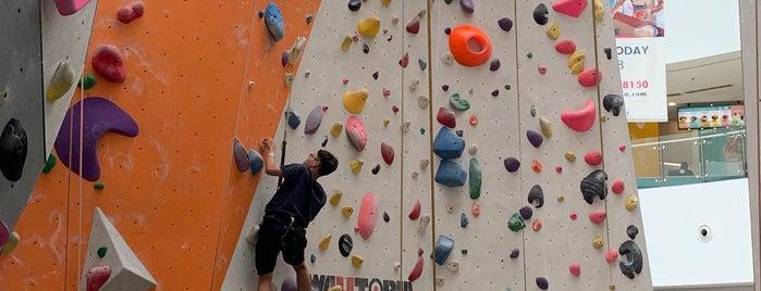 Climb Central is one of Locais curtidos por D.