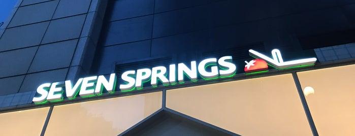 Seven Springs is one of Tempat yang Disukai Meri.