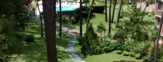 Green Leaves is one of Tempat yang Disimpan Ade.