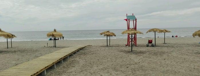 Playa De Arauco is one of Posti che sono piaciuti a Betty.