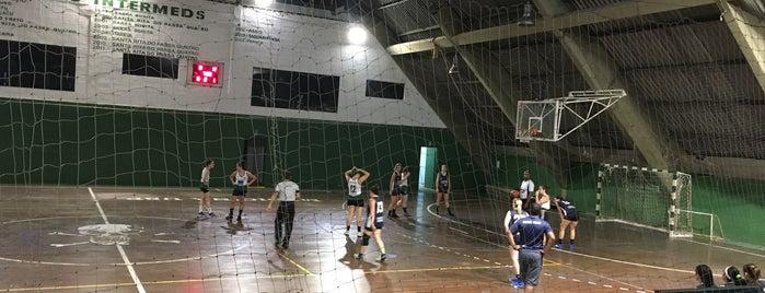 Associação Atlética Acadêmica Oswaldo Cruz (AAAOC) is one of Braga Likes.