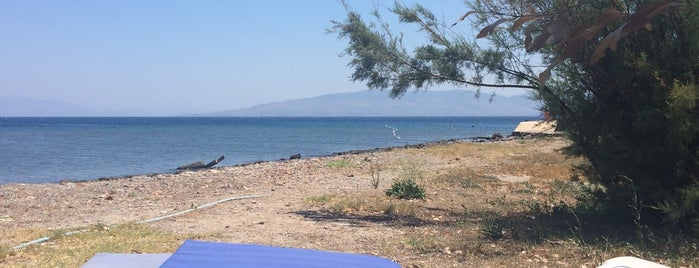 Aspat Beach is one of สถานที่ที่ Ayşem ถูกใจ.