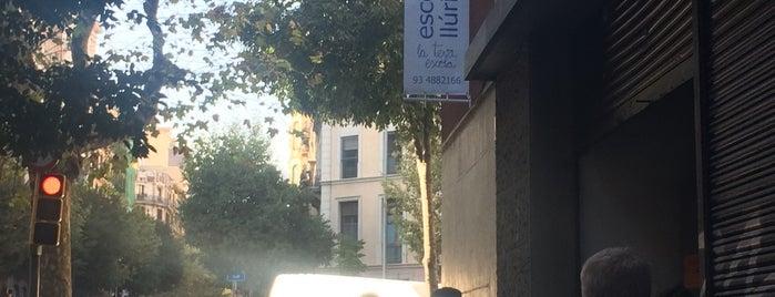 "Centre Educatiu Escolàpies Llúria is one of Eugene ""chuck"" : понравившиеся места."