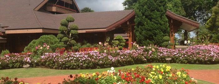 Doi Tung Royal Villa is one of Chiang rai jaoo.