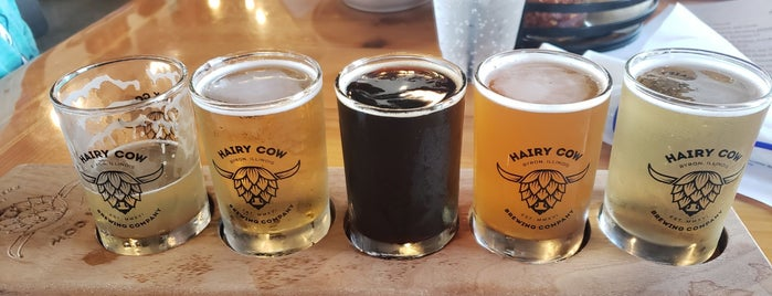 Hairy Cow Brewing is one of Chicago area breweries.