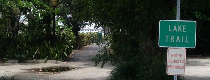 Palm Beach Bike Trail is one of Palm beach island spots.