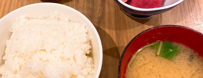 Odayasu is one of TOKYO-TOYO-CURRY 4.