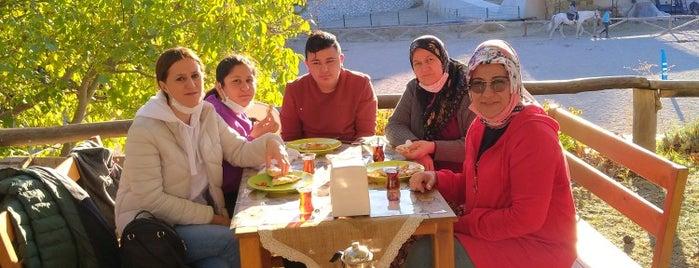 Atabey At Çiftligi is one of Sercan : понравившиеся места.