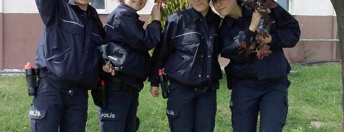Arnavutköy Polis Meslek Eğitim Merkezi is one of Kerim'in Beğendiği Mekanlar.