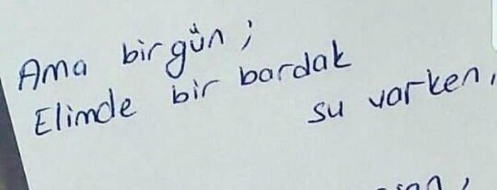 Hacıosmanoğlu Mermer is one of q4.