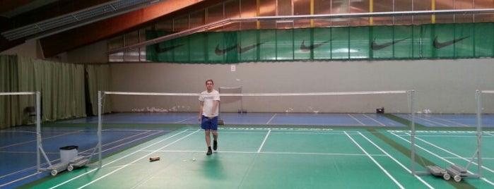 Tennispoint Vienna is one of Locais curtidos por Karl.