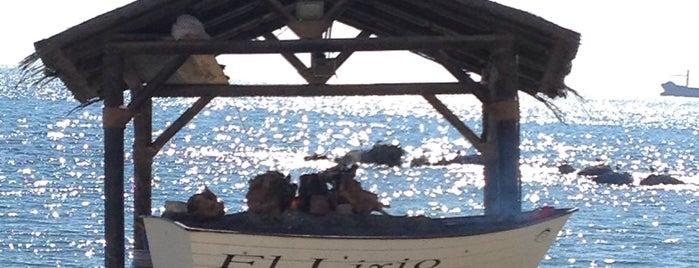 Restaurante El Lirio is one of Sol, playa y buenos restaurantes (Málaga).