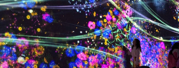 MORI Building DIGITAL ART MUSEUM: EPSON teamLab Borderless is one of Tokyo.