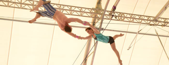 Trapeze School New York (TSNY) - Washington DC is one of Washington, DC.