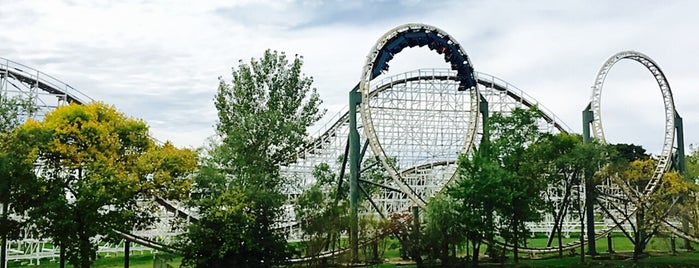 The Dragon is one of Rollercoasters I've Conquered.