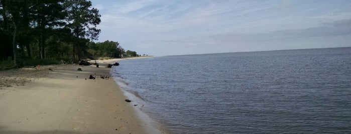 Roaring Point is one of Eastern Shore.