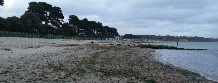Avon Beach is one of Locais salvos de Yolanda.