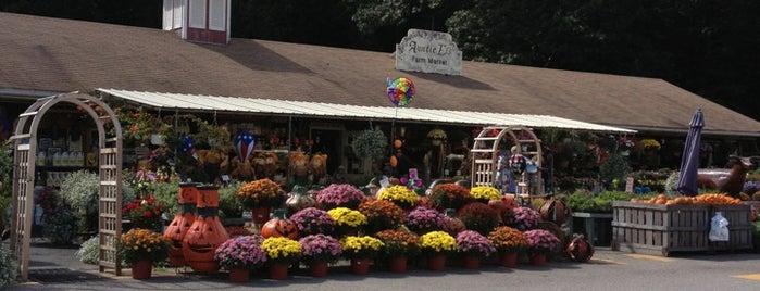 Auntie El's Farm Market is one of Tempat yang Disukai Mario.